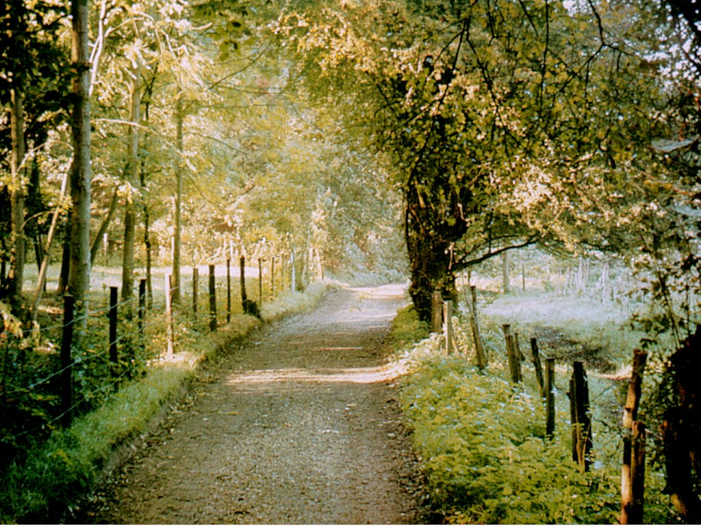 K Chenhaus K Ln file moor park farnham jpg wikimedia commons