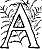 Page 168 initial from The Fables of Æsop (Jacobs).png