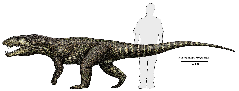 Postosuchus_kirkpatricki.jpg