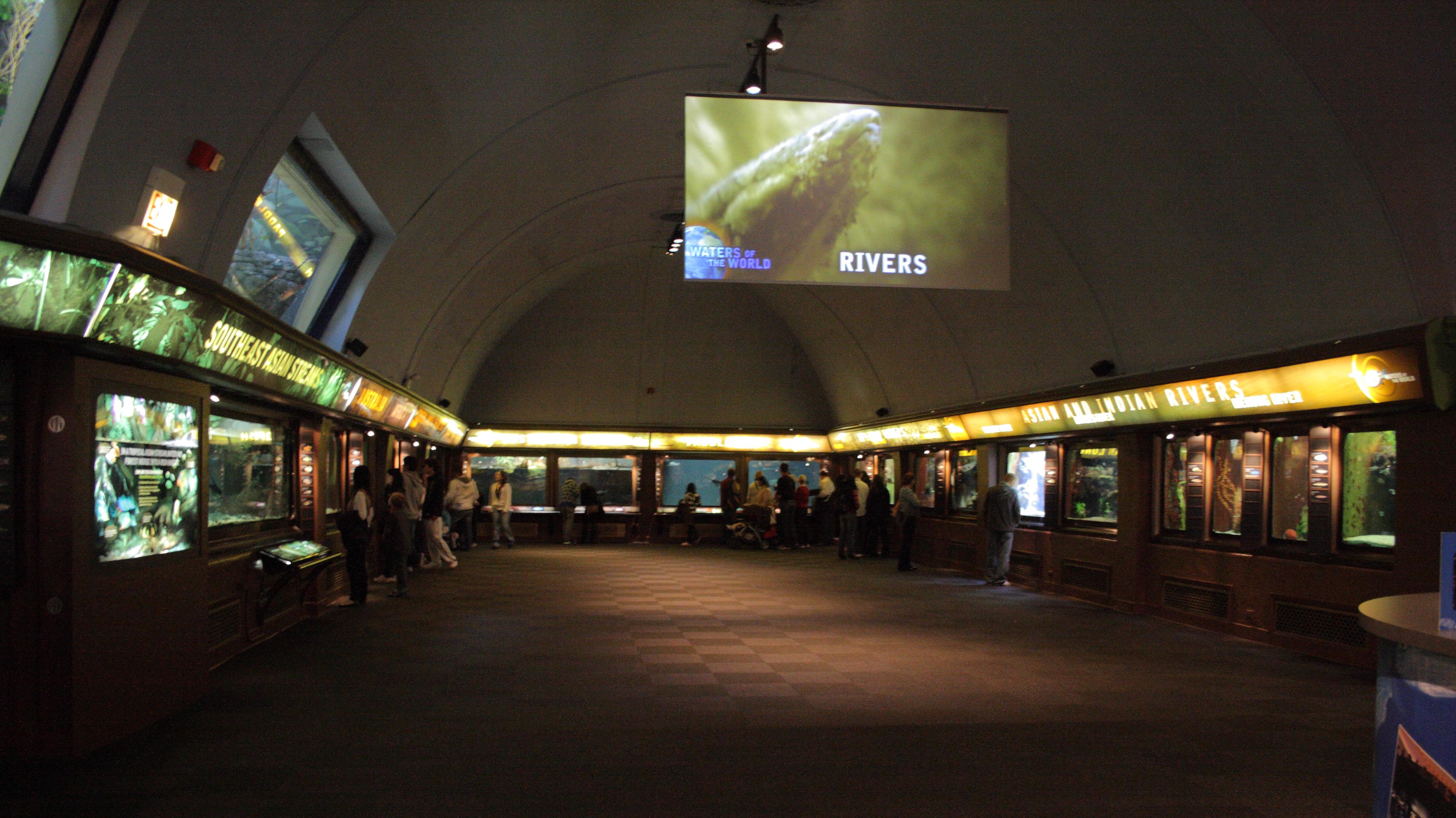 Shedd Aquarium Exhibits
