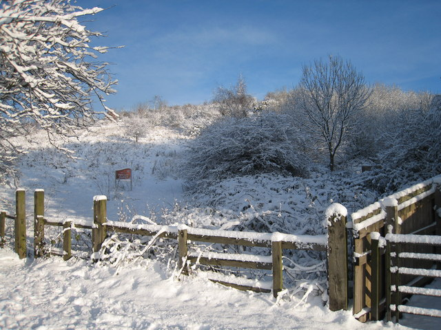Snow at Flatts Lane Woodland Country Park - geograph.org.uk - 1627679