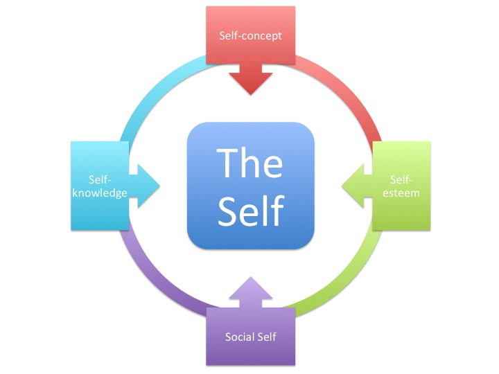modern factors affecting the development of self consciousness The hamlet who walked the stage in 1600 already saw his world and self with profoundly modern and self-consciousness: conscious experiences affect.