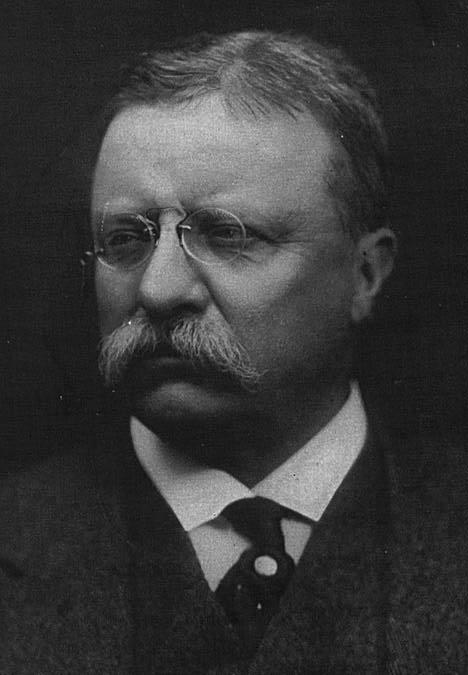 1912, année d'élections aux USA TheoRoosevelt