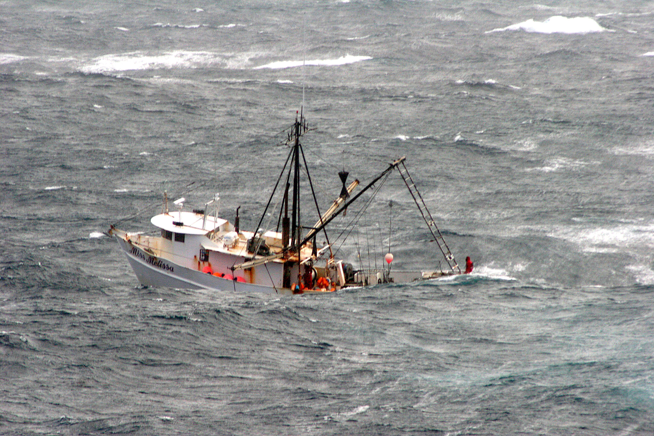 Utah Boat Shelters : U s seafood dealer lied about fish being caught in