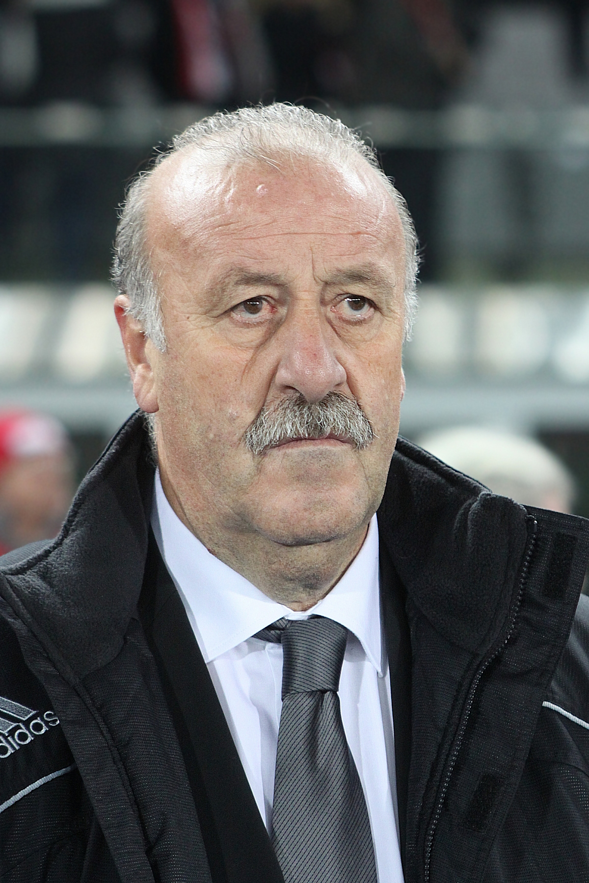 Vicente del Bosque Net Worth