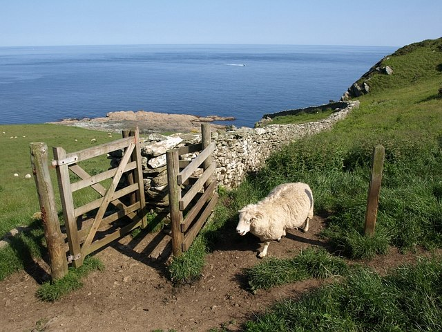 Wall and gate near Prawle Point - geograph.org.uk - 845256