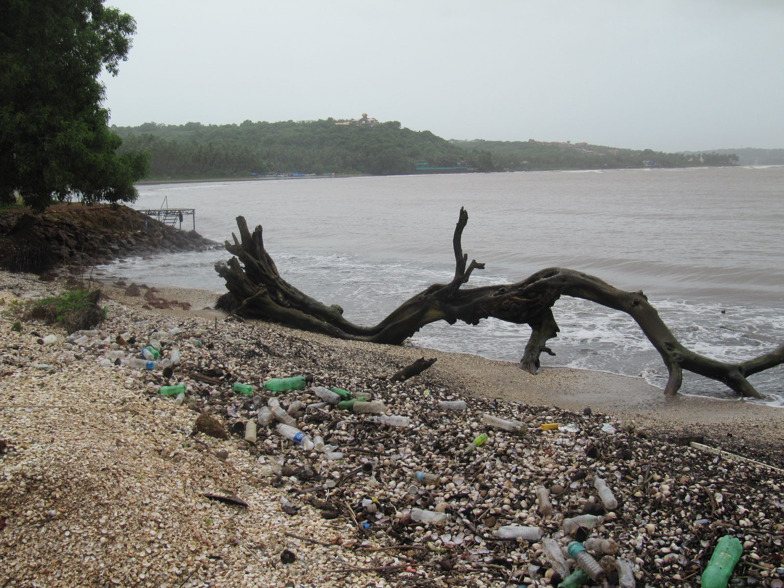 essay on ban on plastics in india