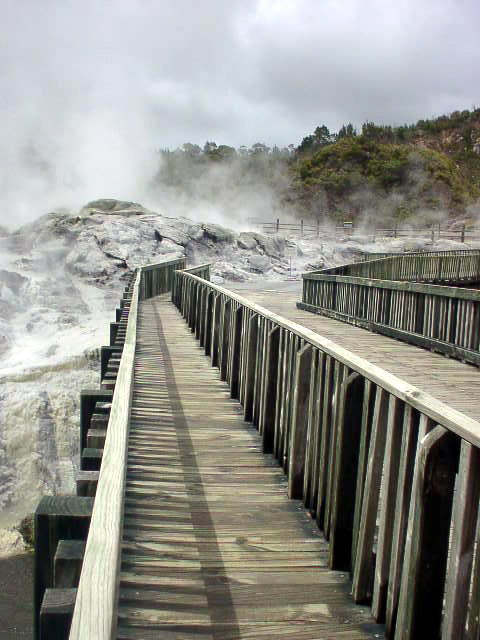 http://upload.wikimedia.org/wikipedia/commons/9/92/Whakarewarewa.JPG