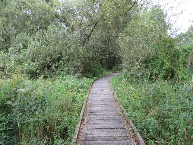 Winnall Moors Nature Reserve (geograph 5509513)