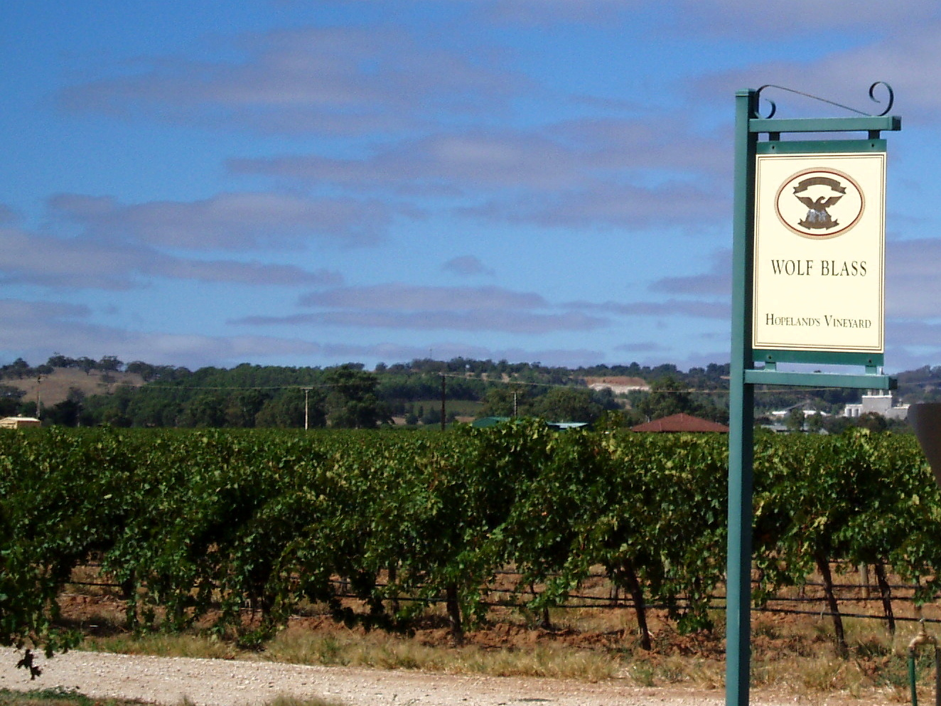 Where Are Barossa Fine Food Shops Located In South Australia
