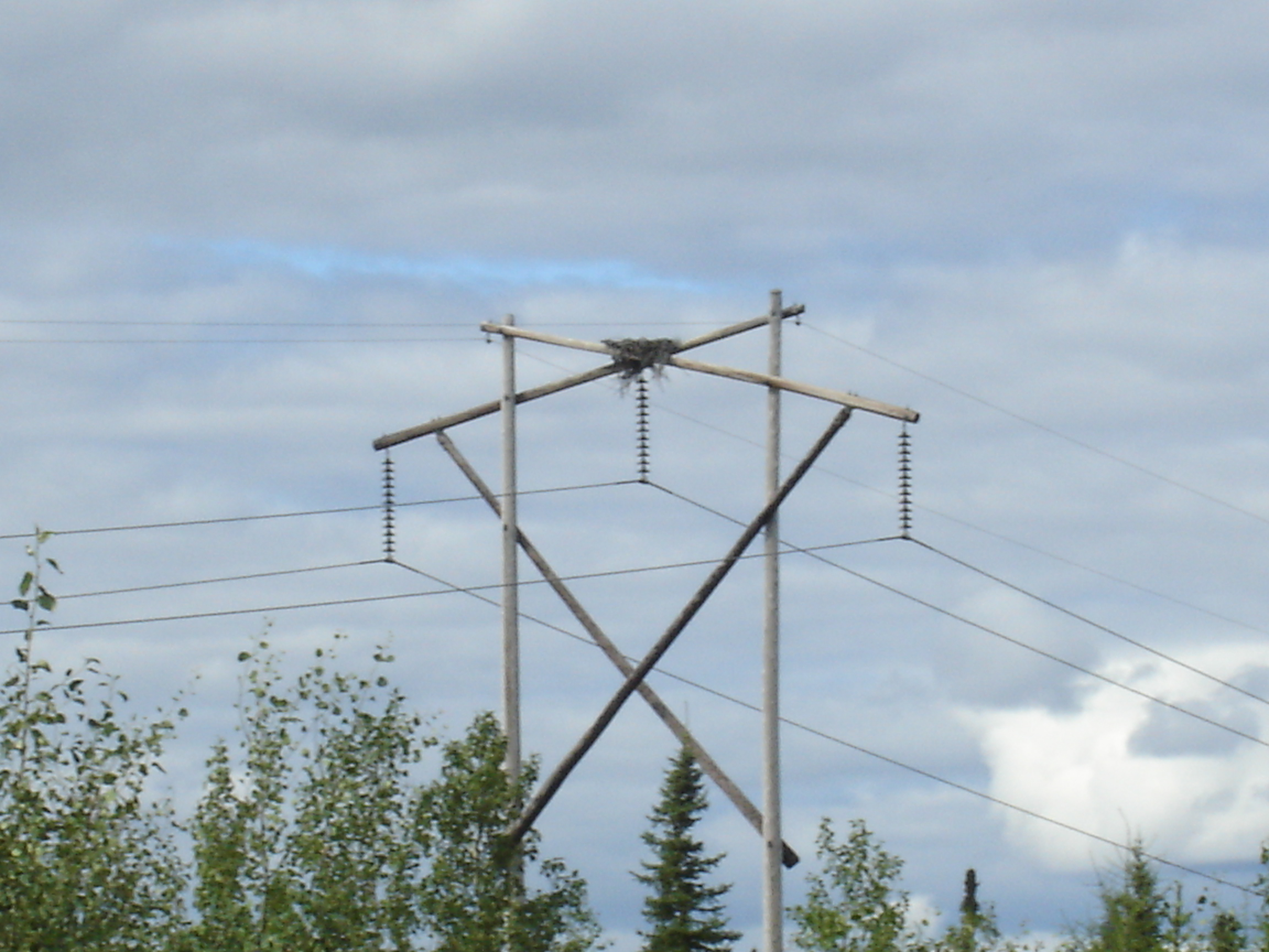 File wood pylon w eagle wikipedia for Pylon foundation