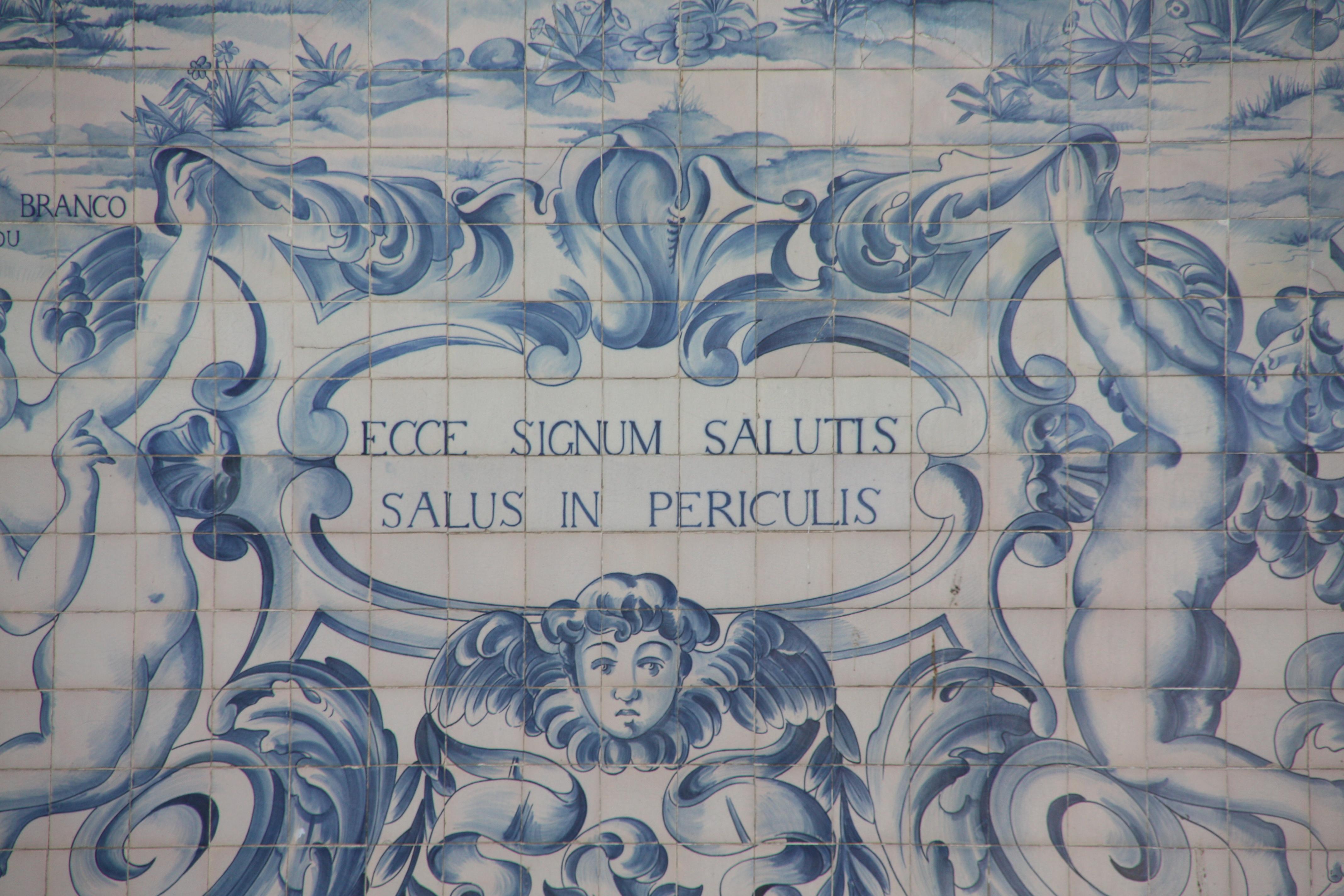 Salus salutis latino dating