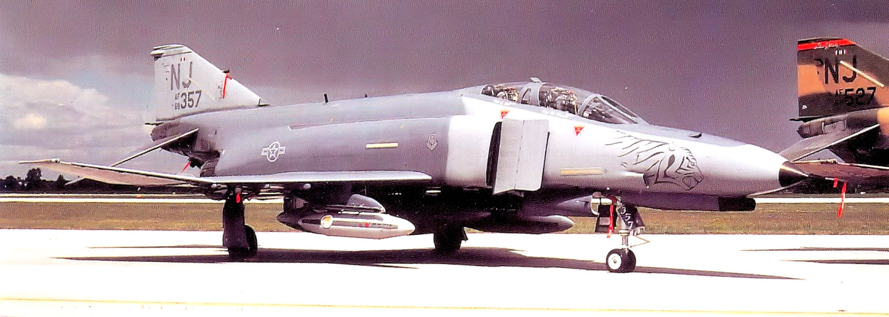 141st Fighter Squadron