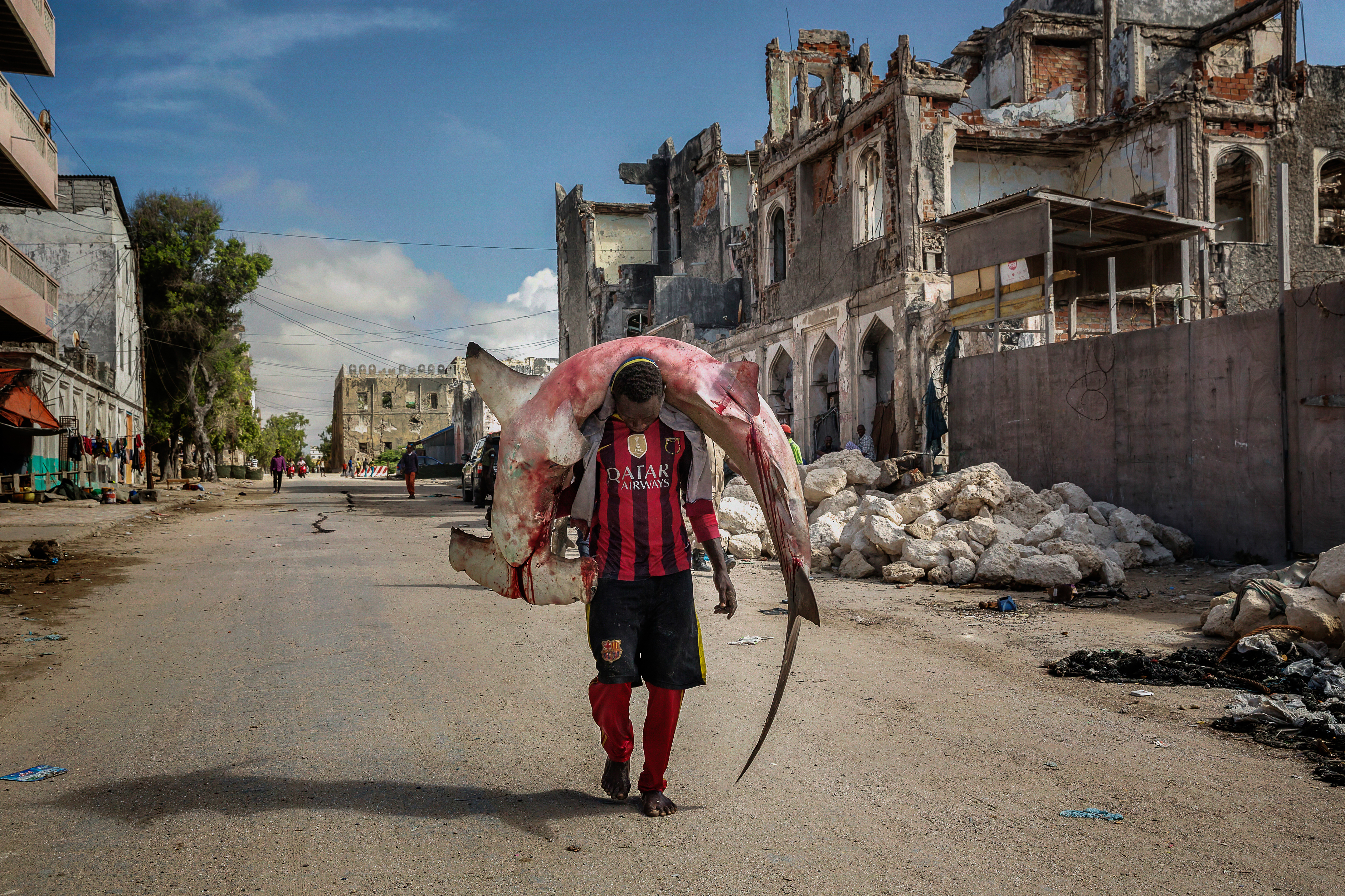 file a man carries a huge hammerhead through the streets of