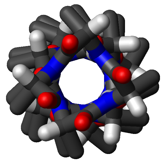 Top view of an alpha-helix