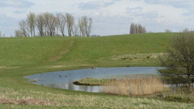 Bidder's Pond at Mitcham Common - geograph.org.uk - 1219883