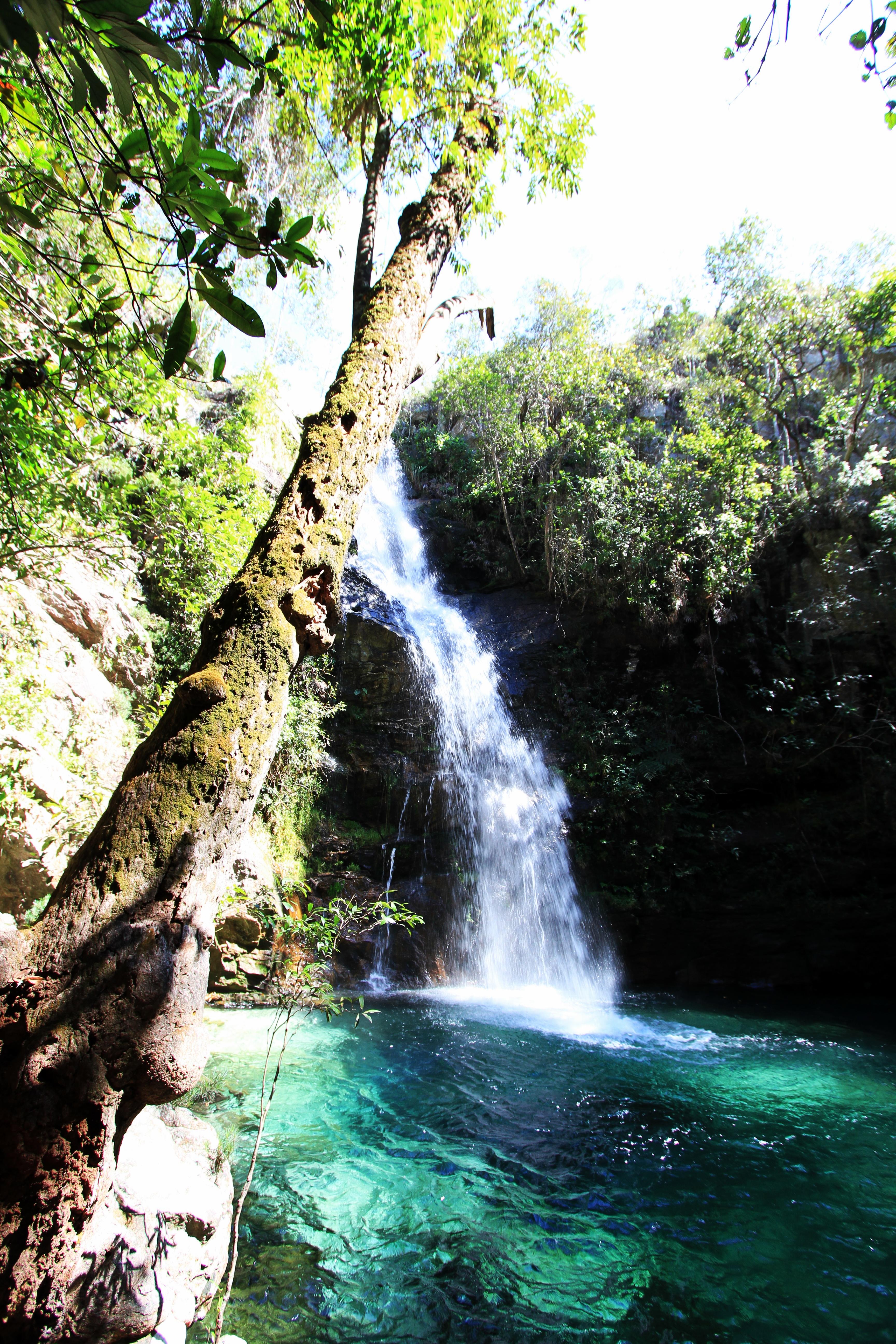 Cavalcante Goiás fonte: upload.wikimedia.org