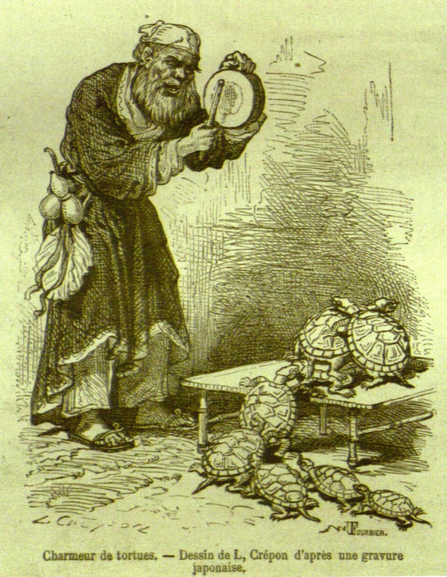 Kaplumbaga Terbiyecisi Vikipedi