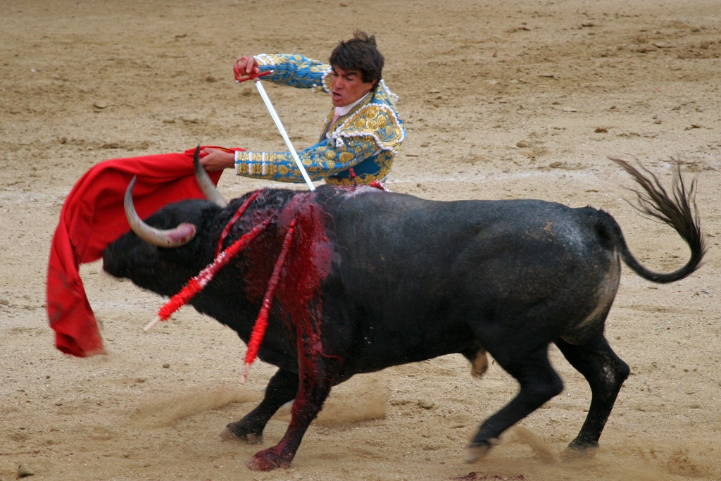 http://upload.wikimedia.org/wikipedia/commons/9/93/Corrida_0019.jpg