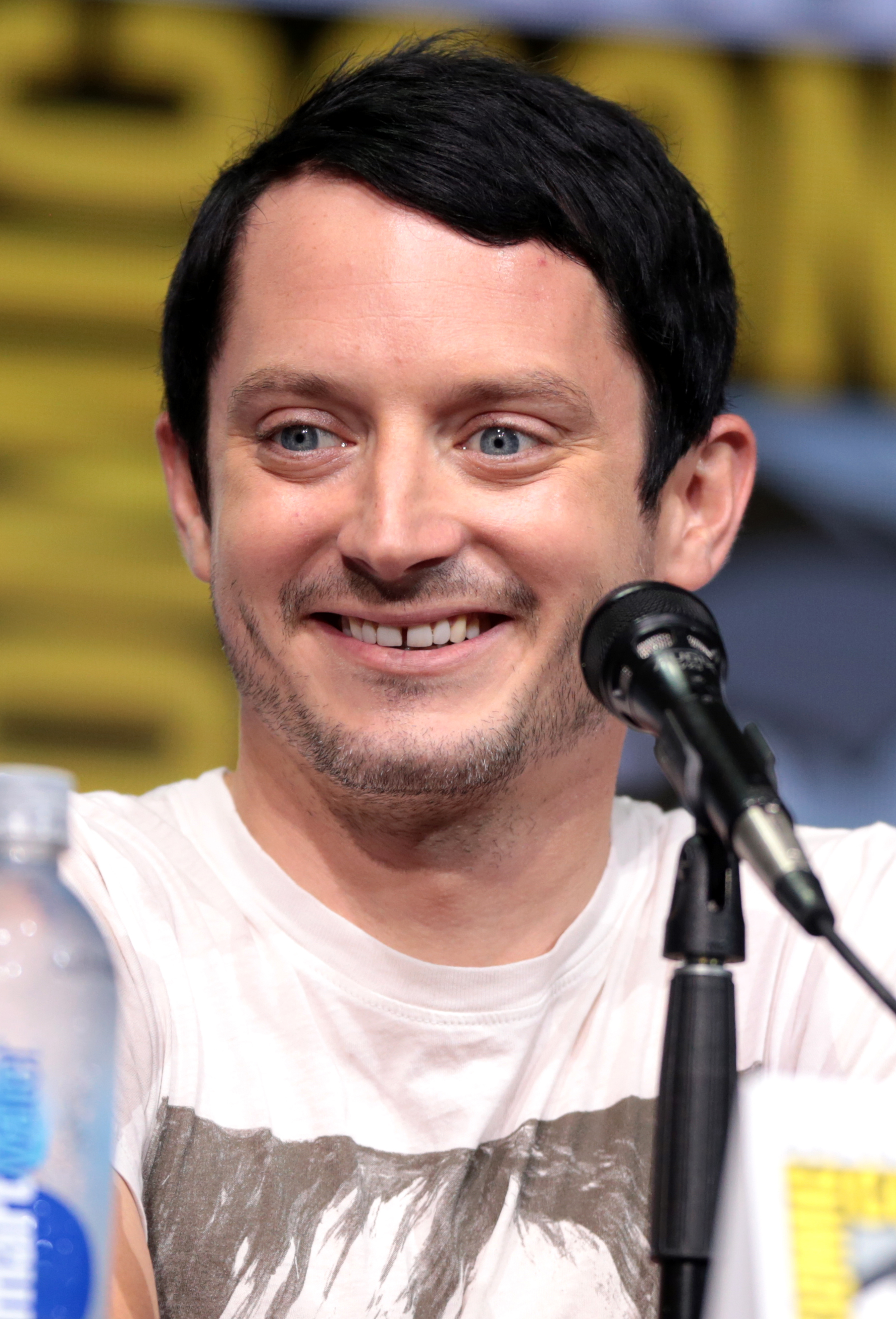 The 37-year old son of father Warren Wood and mother Debbie Wood Elijah Wood in 2018 photo. Elijah Wood earned a  million dollar salary - leaving the net worth at 18 million in 2018