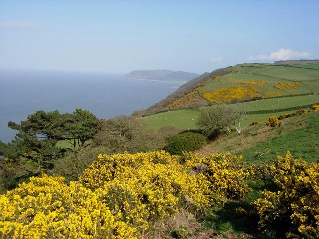 Exmoor Coastal View - geograph.org.uk - 163682