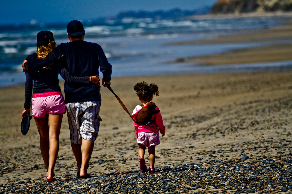 http://www.flickr.com/photos/swotai/2387046096/ |title=Family? |taken=Taken on April 2, 2008 |photographer_url=http://www.flickr.com/photos/swotai/ |photographer=swotai |reviewer=
