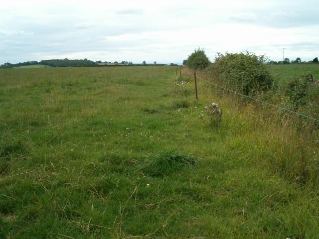 File:Fields near Ashcott - geograph.org.uk - 230990.jpg
