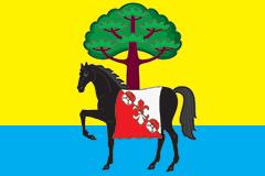 Flag of Morshansky rayon (Tambov oblast).png