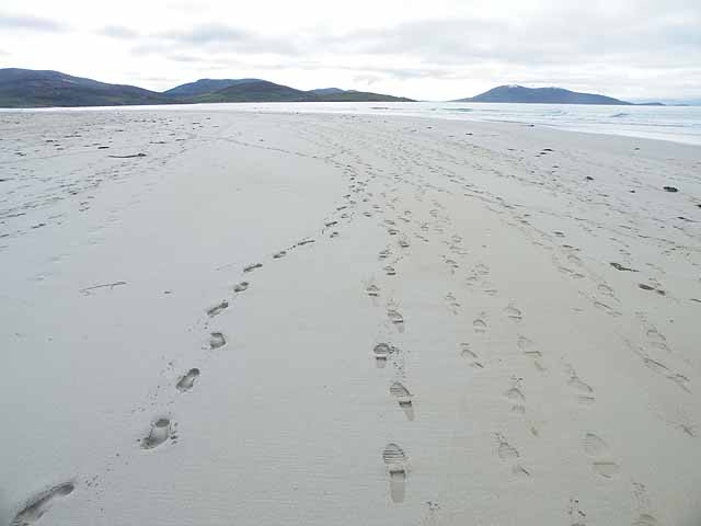 Footprints in the sand - geograph.org.uk - 1515129