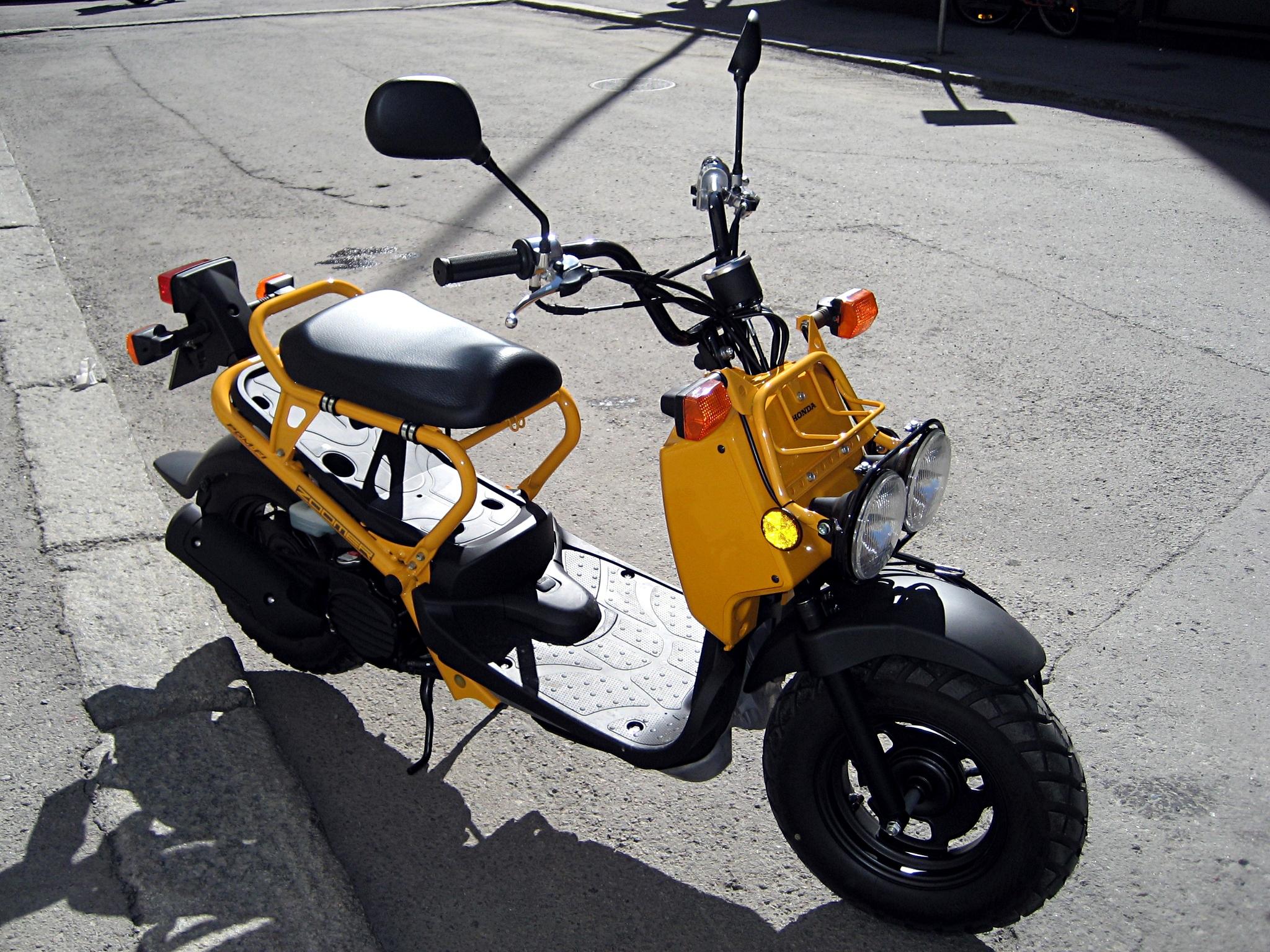 file honda zoomer 50cc scooter 2008 jpg. Black Bedroom Furniture Sets. Home Design Ideas