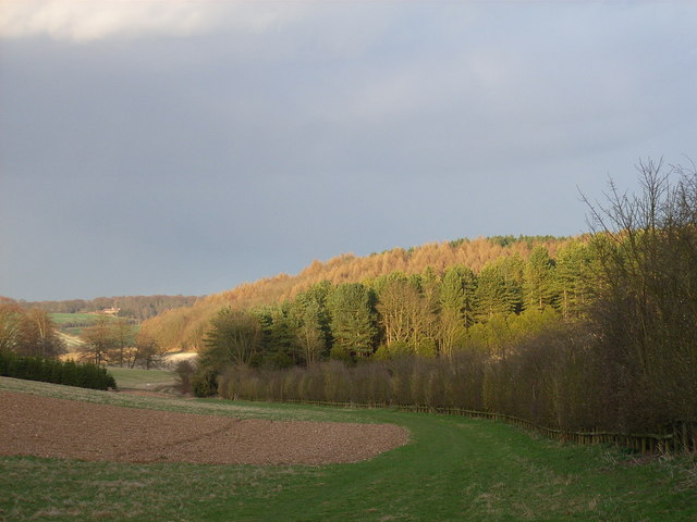 In the valley east of Mop End - geograph.org.uk - 149940