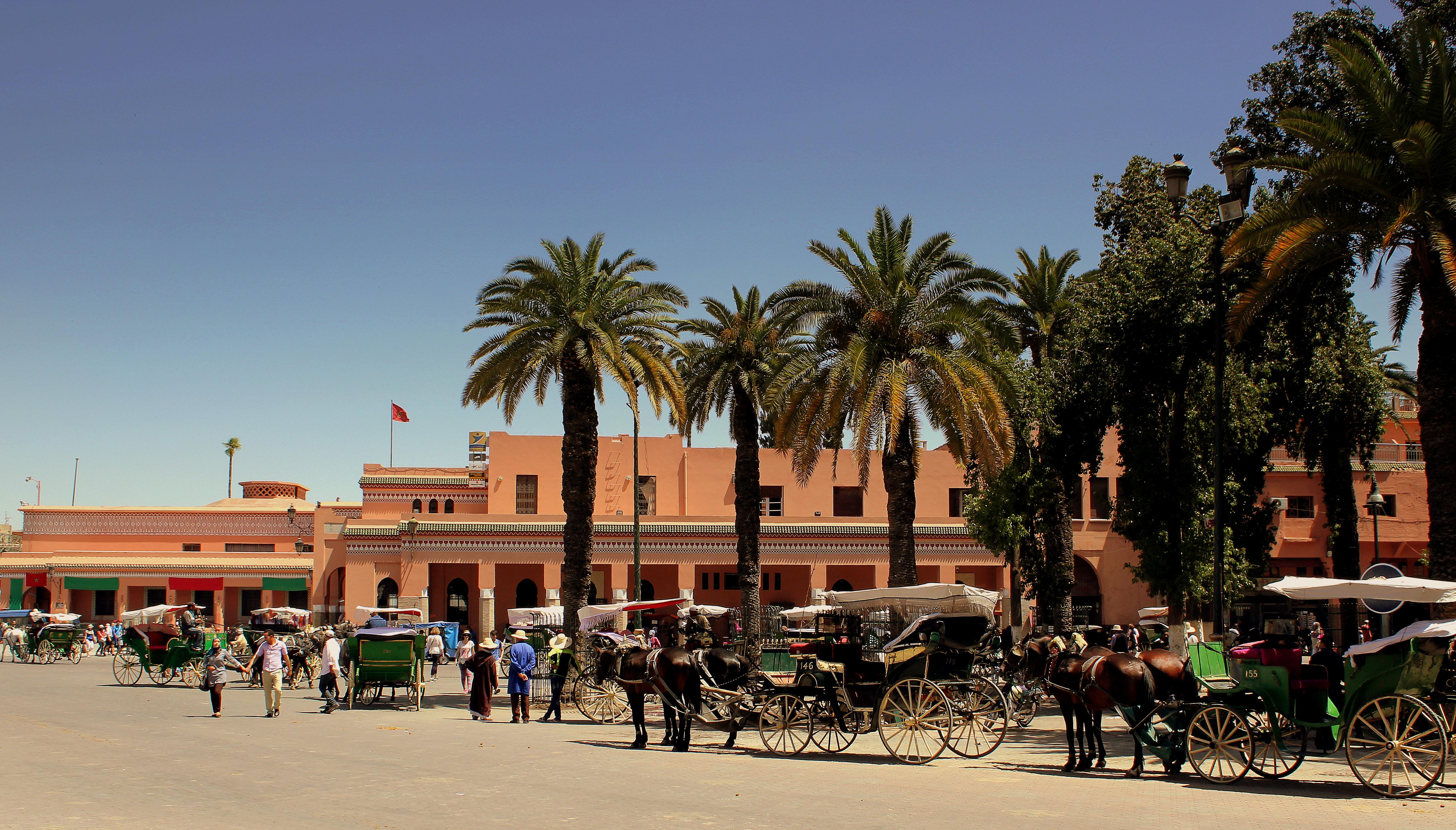 Speed dating marrakech