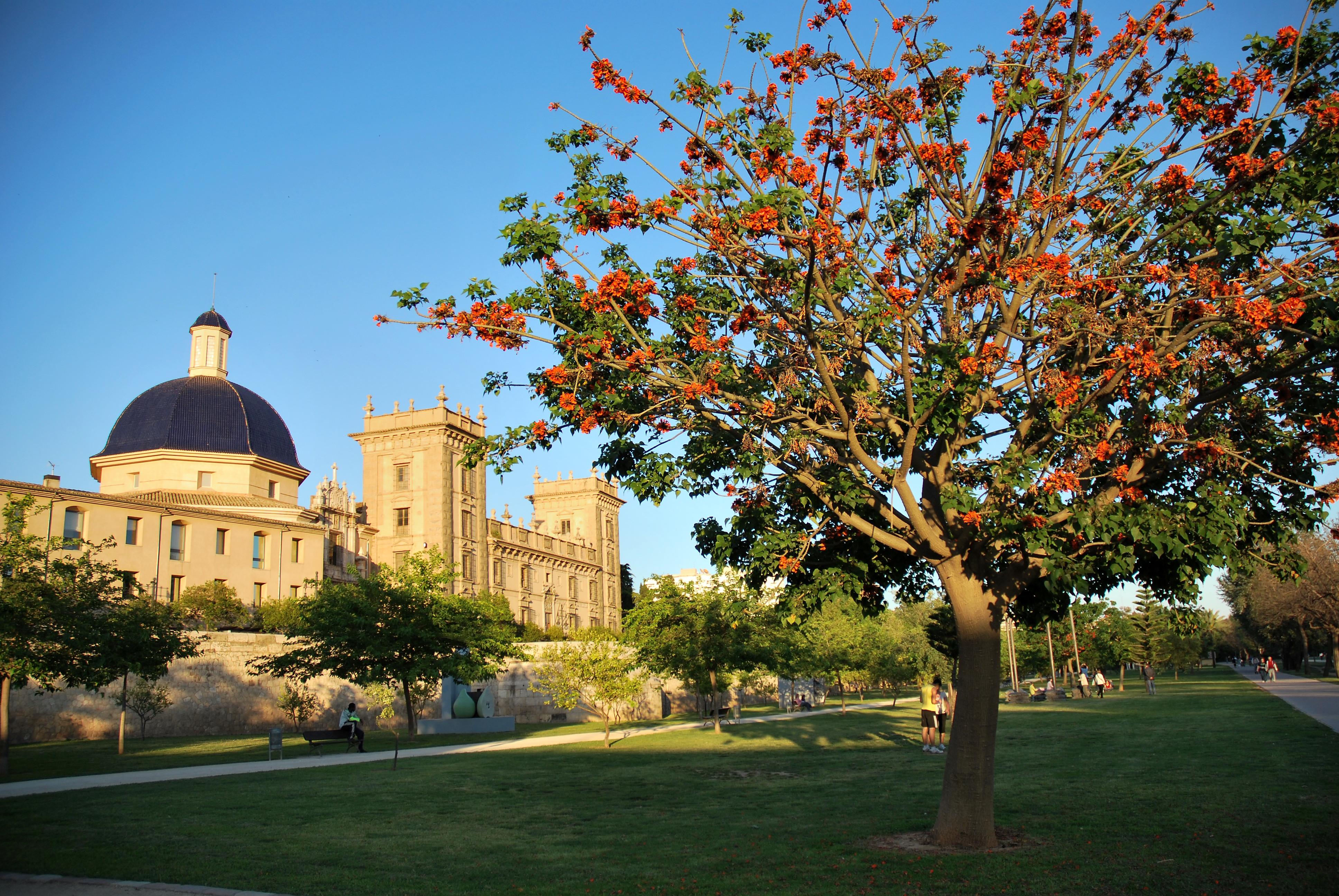 Valencija pomladi 2012 - Jardines valencia ...