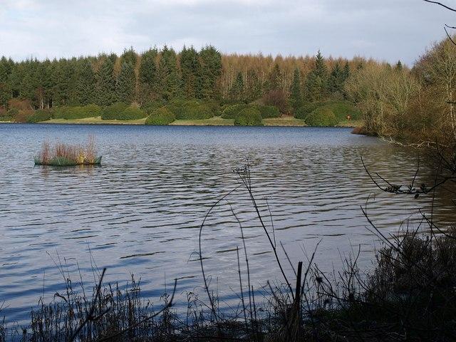 Kennick Reservoir - geograph.org.uk - 1228500