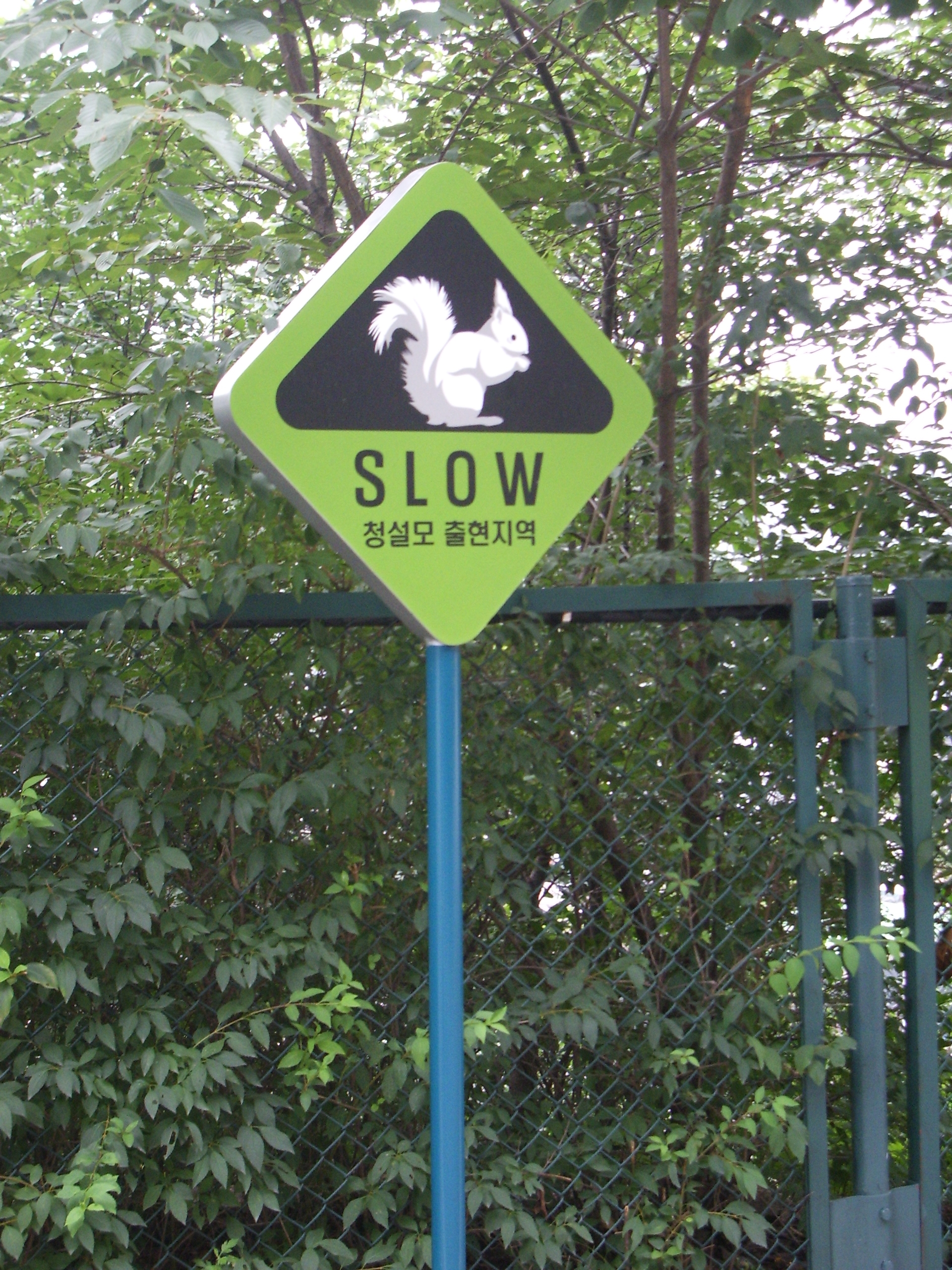 Korea-seoul-Namsan-slow sign.jpg