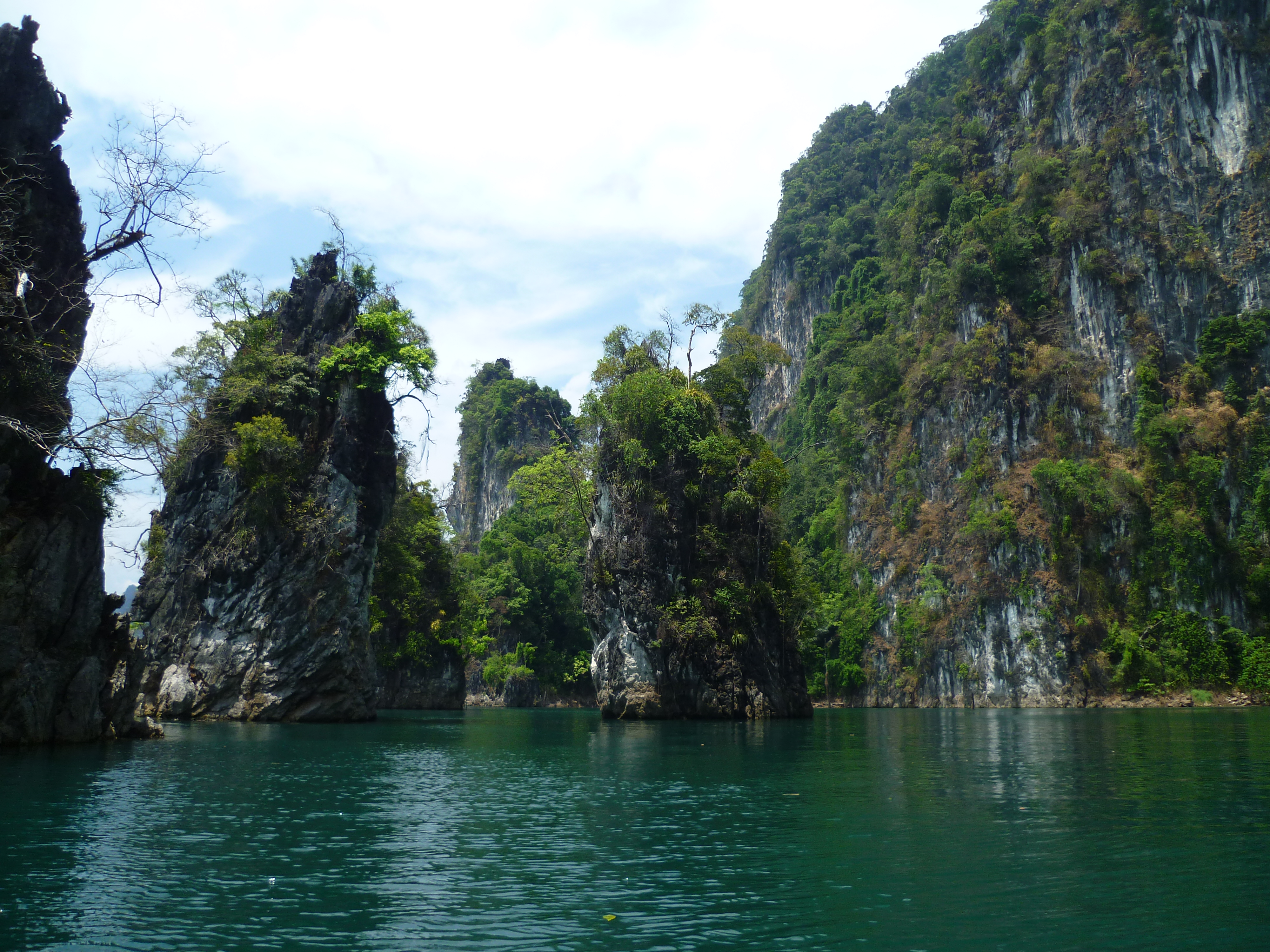 The Most Beautiful Thai Jungles