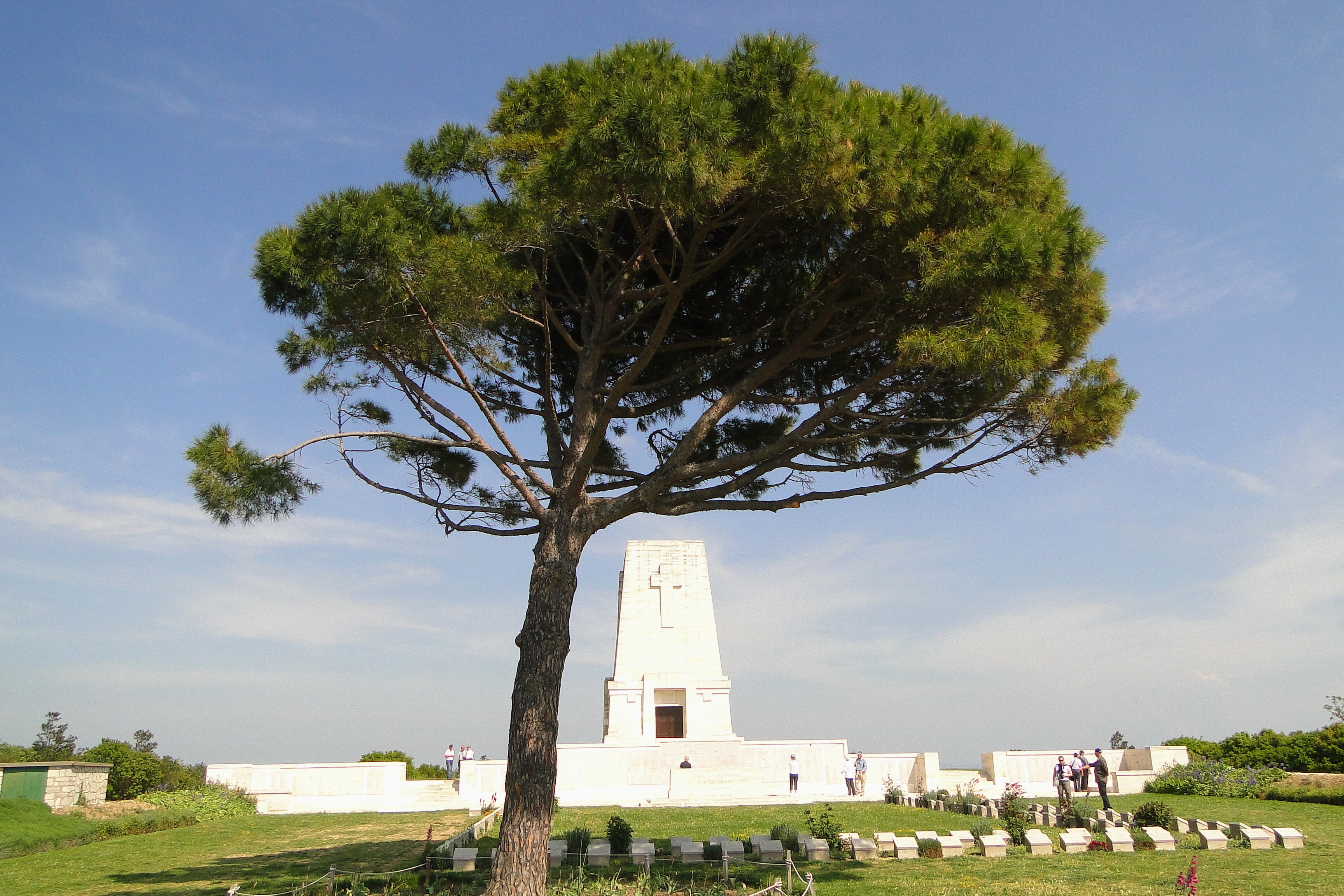 Gallipoli Lone Pine