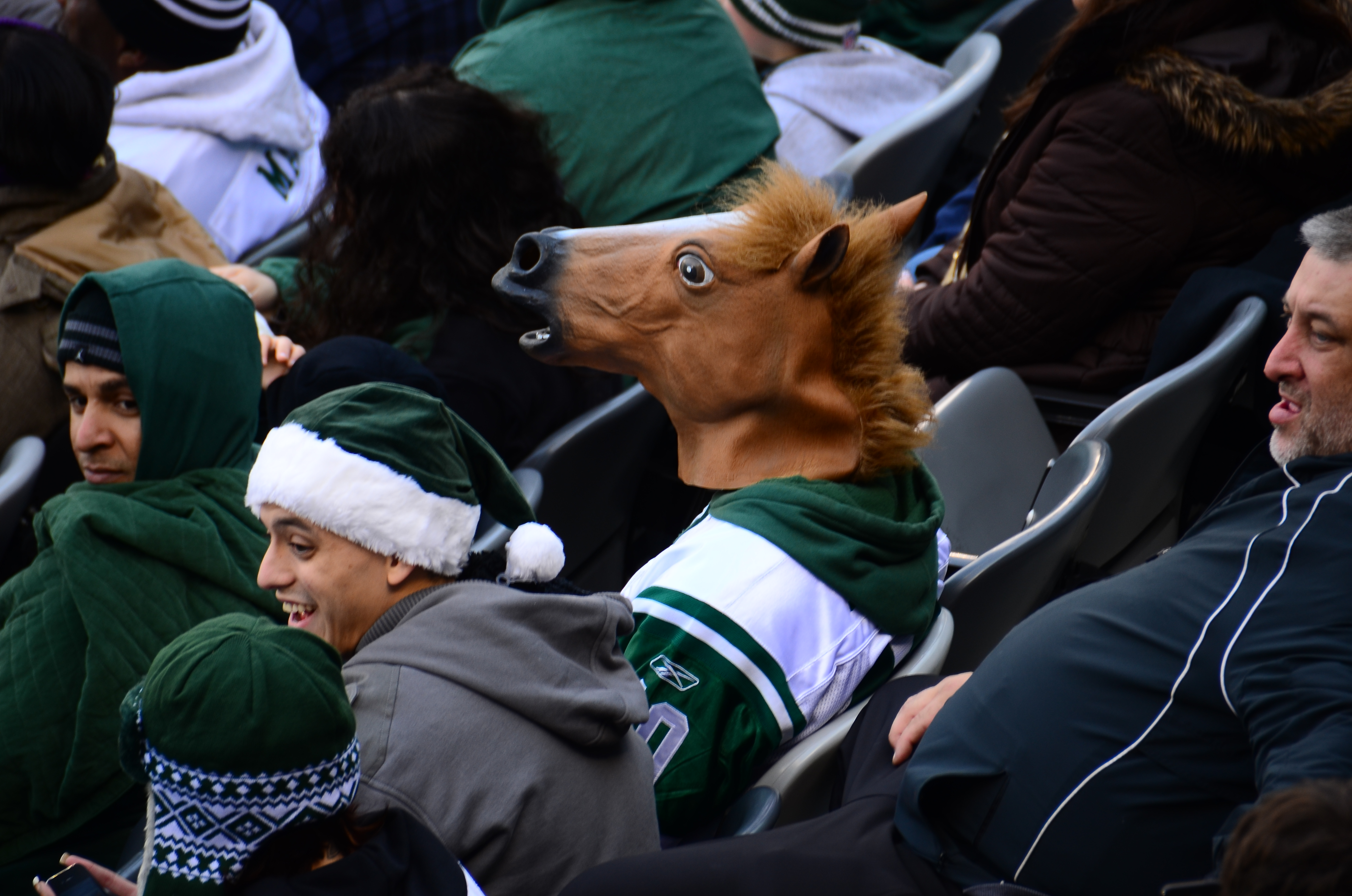 a Person Wearing a Horse Head