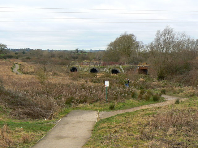 Mouldon Hill Country Park, Swindon - geograph.org.uk - 323128