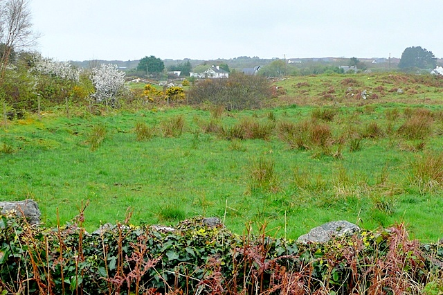 File:Na Poilliní (Polleeny) - geograph.org.uk - 1288423.jpg