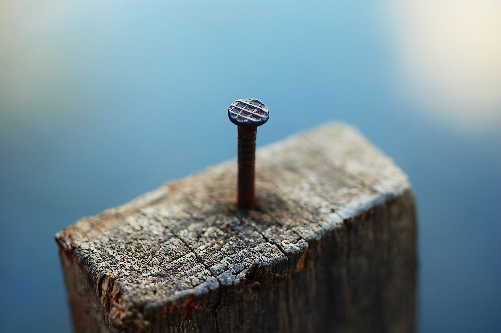 Nails can be hammered or shot into materials such as wood.