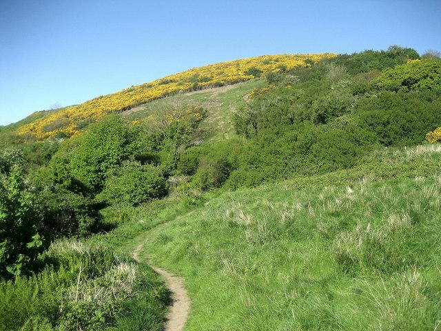 Offa's Dyke Path climbing Coed y Esgob - geograph.org.uk - 1336071