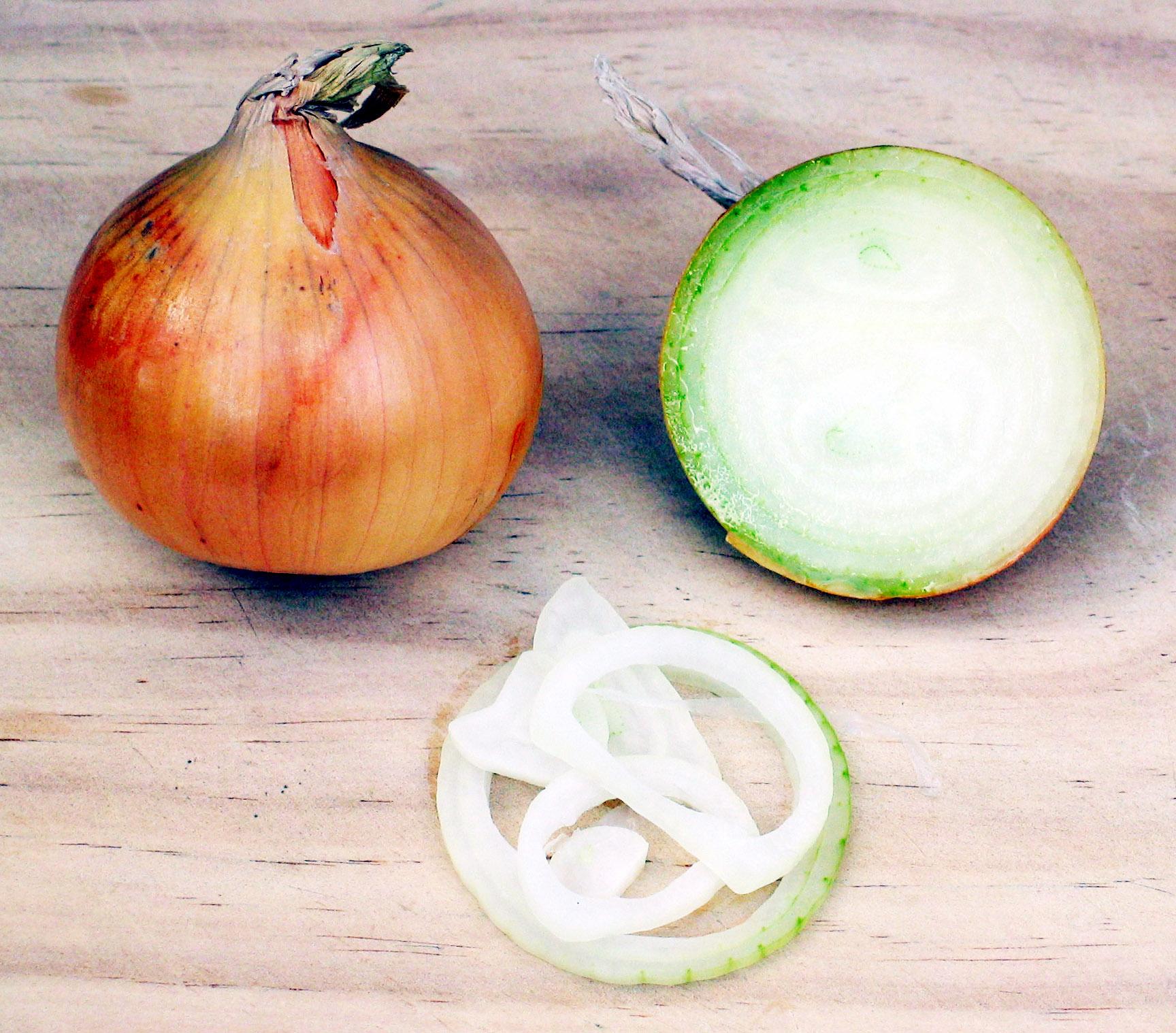 File Onion jpg - Wikip...