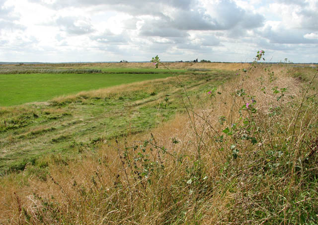 Past Burgh Castle Marshes on the Angles Way - geograph.org.uk - 1484324