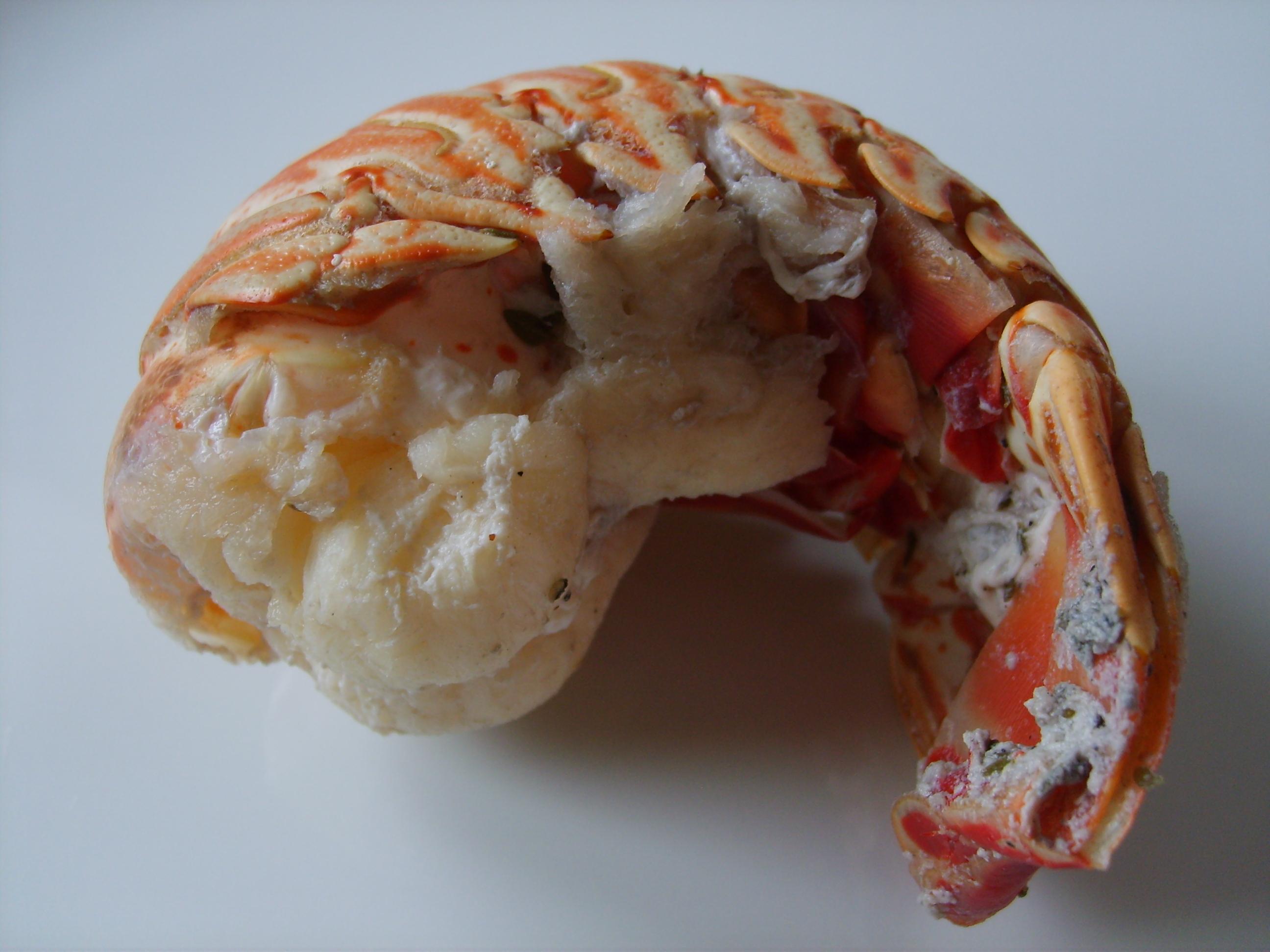 Fichier queue de langouste jpg wikip dia - Cuisiner des queues de langouste ...