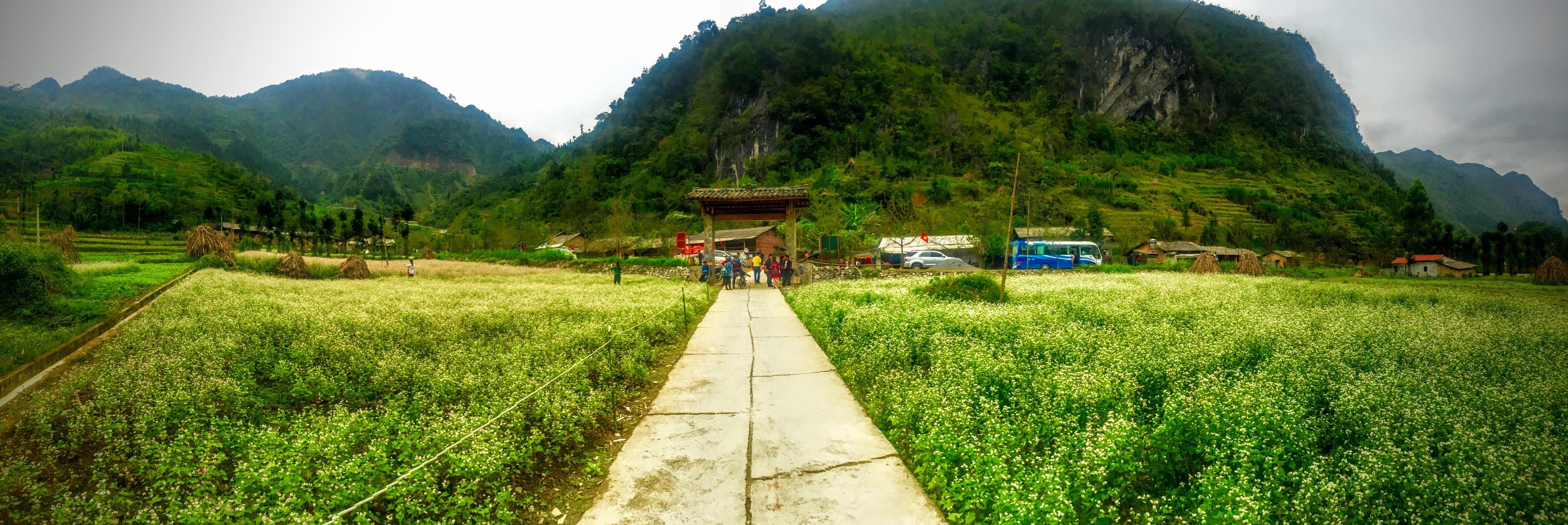 File S U1ee7ng L U00e0 U0110 U1ed3ng V U0103n H U00e0 Giang Vietnam Panoramio Jpg