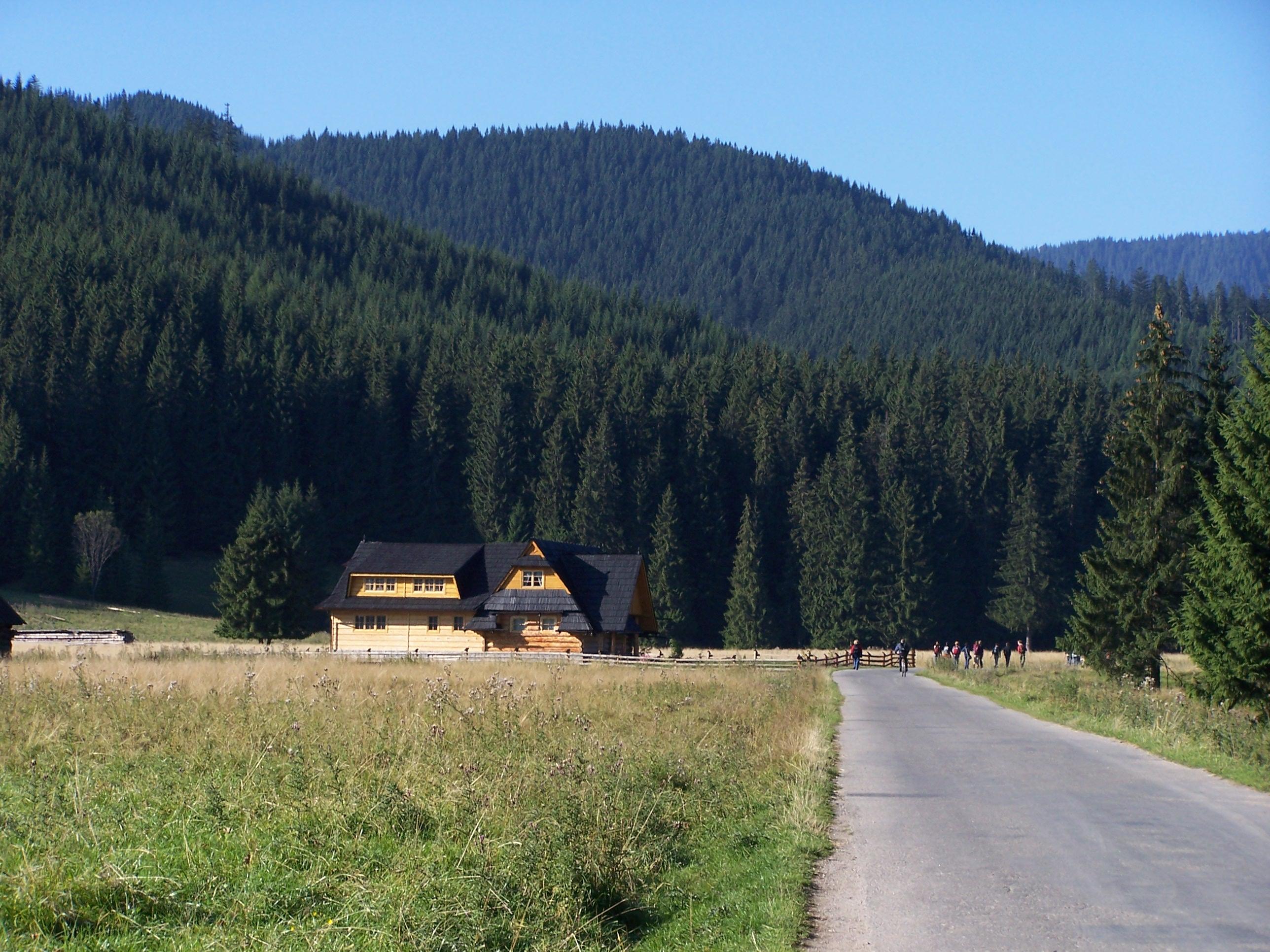Siwa Polana (źródło: Wikimedia, fot. J.Opioła, GNU Licencja Wolnej Dokumentacji)