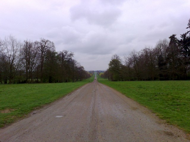 Stowe Avenue - geograph.org.uk - 1248621