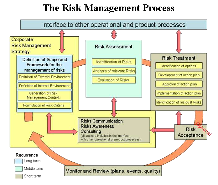 English: The Risk Management Process for IT Sy...