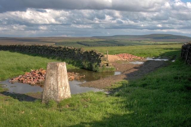 Triangulation Pillar, Beacon Hill - geograph.org.uk - 879714